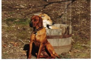 Joe & Shiloh in a barrel